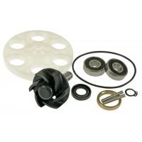 Ремкомплект водяной помпы Motoforce MBK (сальник,подшипники,импеллер,вал,кольца)